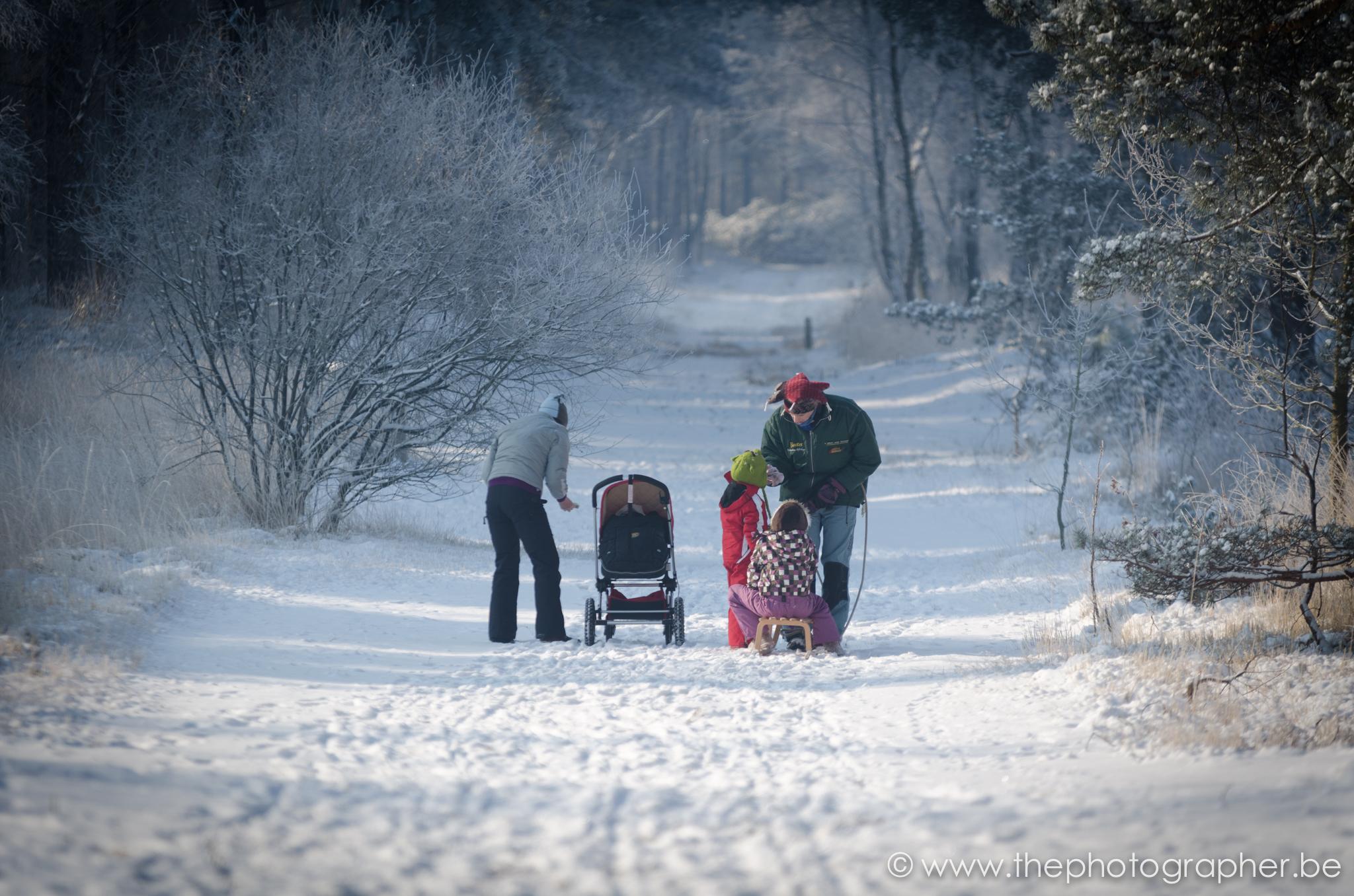 fotograaf portret landschap familie sneeuw wandeling kalmthoutse heide 20120204