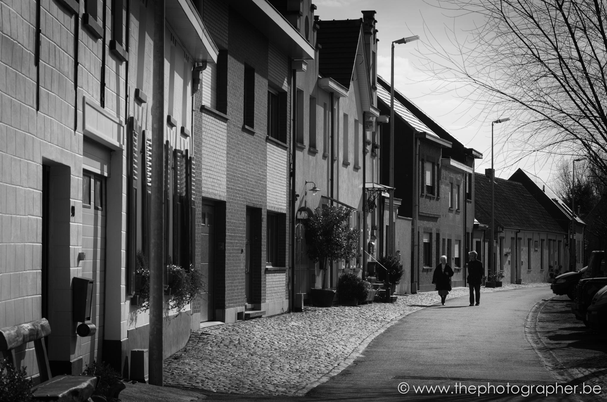 fotograaf landschap straat dorp sint amands zwartwit 20120311