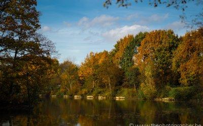 Prachtige kleurtonen in de natuur tijdens de herfst